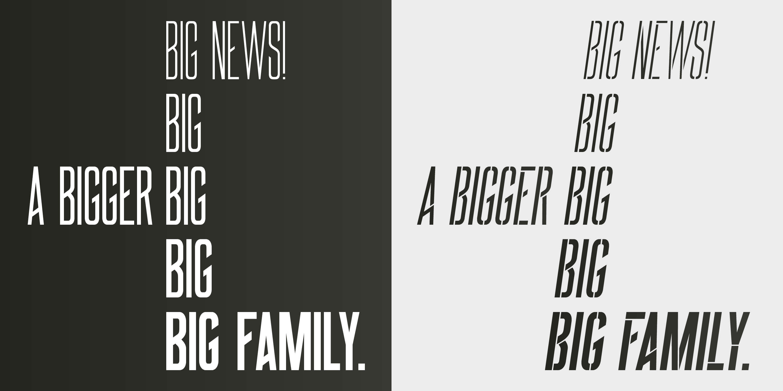 BIG_Behance2