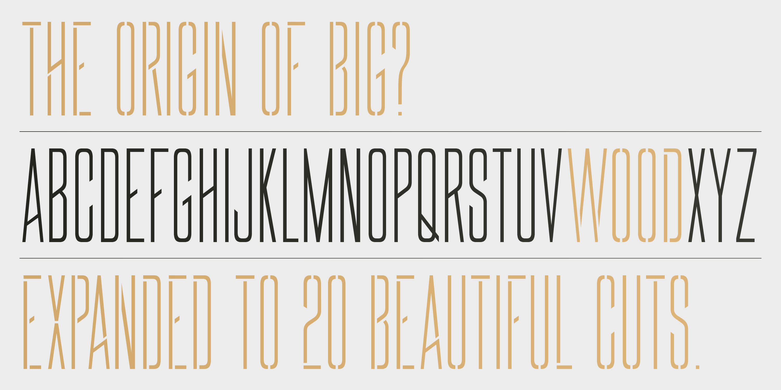 BIG_MyFonts_Dev07