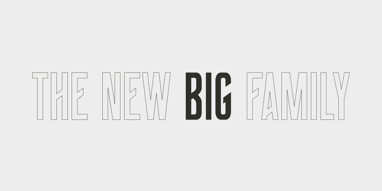 BIG_Behance